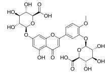 Diosmetin-3',7-diglucuronide