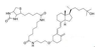 25-Hydroxy vitamin D3-LC-biotin