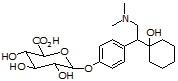 O-Desmethylvenlafaxine β-glucuronide