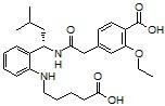 Repaglinide M2
