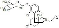 3-β-naltroxone Glucuronide