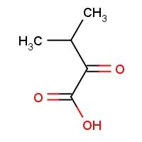 3-Methyl-2-oxobutanoic acid