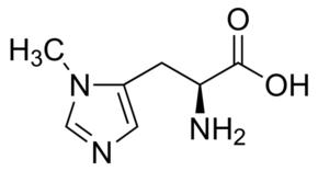 3-Methyl-L-Histidine