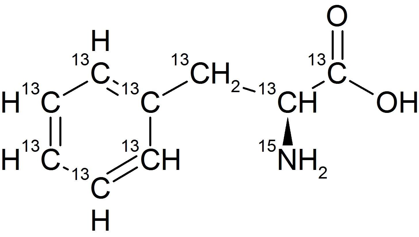 L-Phenylalanine-UL-<sup>13</sup>C<sub>9</sub>,<sup>15</sup>N