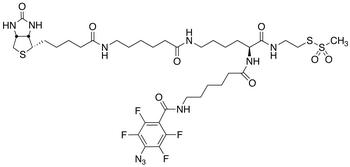 2-[N<sub>2</sub>-[N<sub>6</sub>-(4-Azido-2,3,5,6-tetrafluorobenzoyl)-6- aminocaproyl]-N<sub>6</sub>-(6-biotinamidocaproyl)-L -lysinylamido]ethyl Methanethiosulfonate